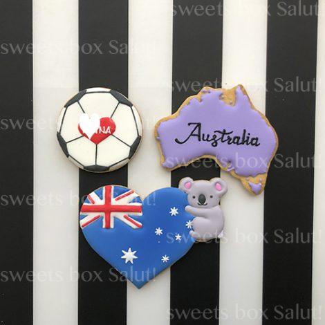 オーストラリア留学祝いのアイシングクッキー1